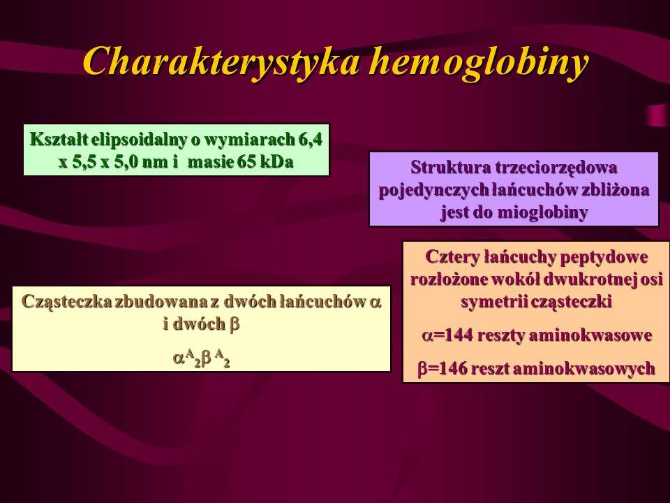 Charakterystyka hemoglobiny