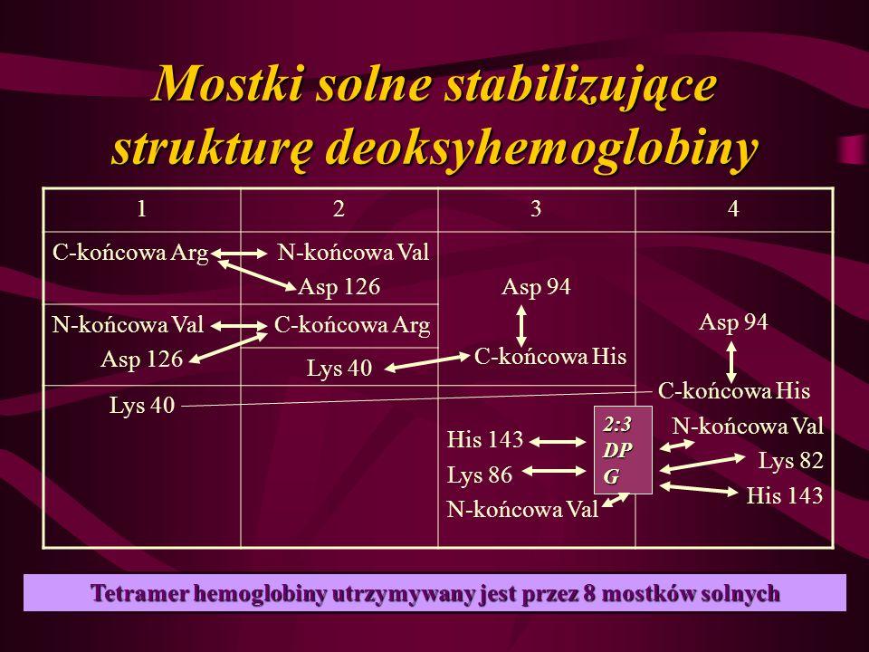 Mostki solne stabilizujące strukturę deoksyhemoglobiny