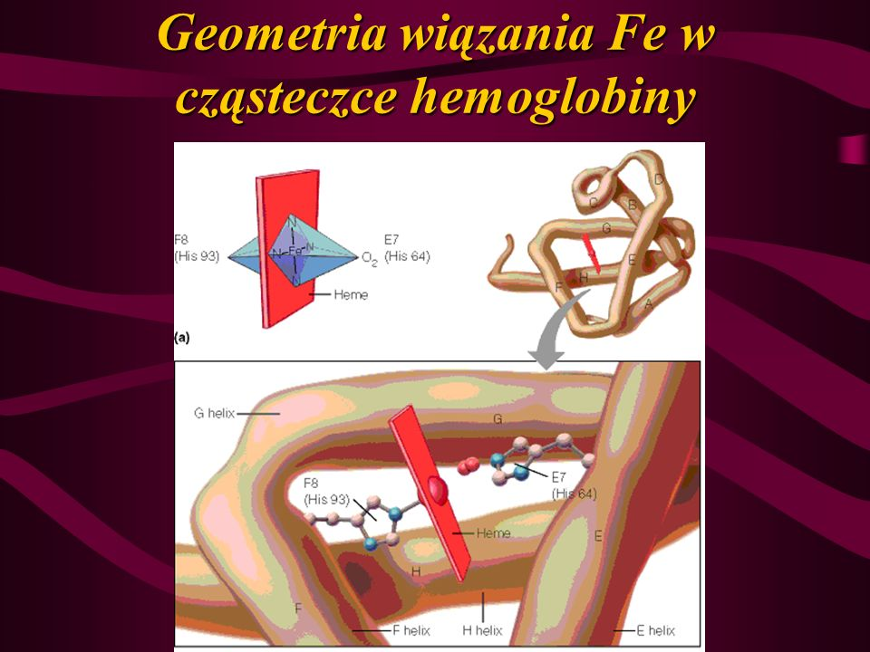 Geometria wiązania Fe w cząsteczce hemoglobiny