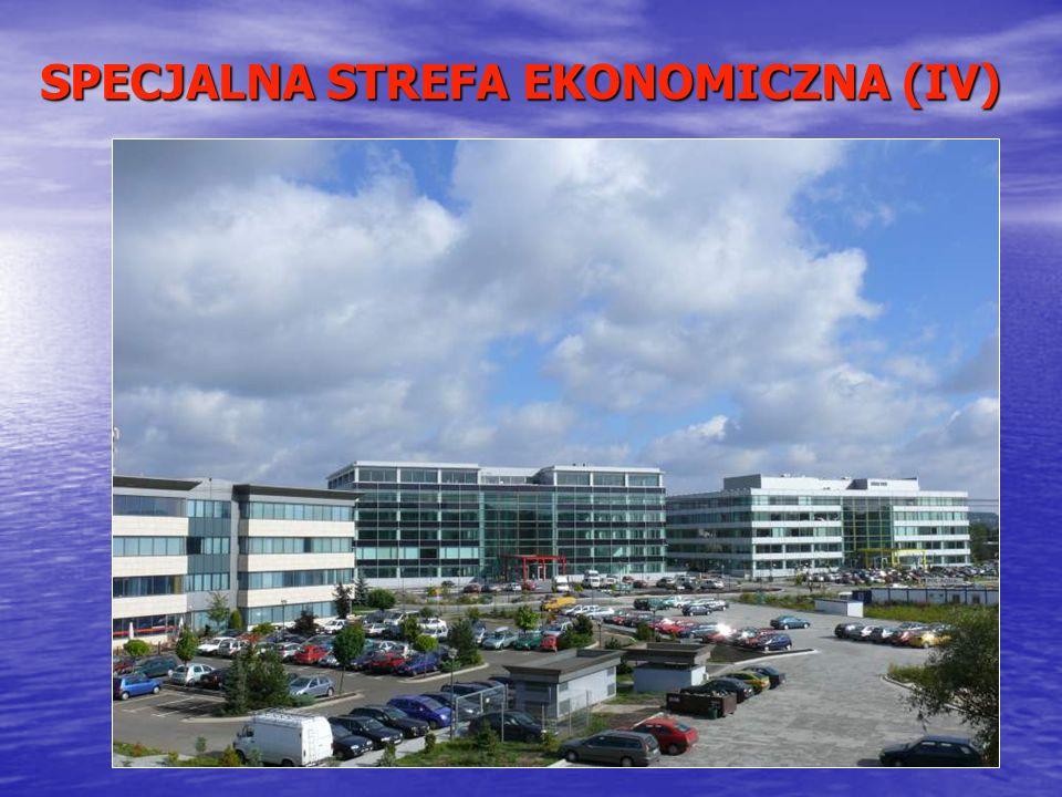 SPECJALNA STREFA EKONOMICZNA (IV)