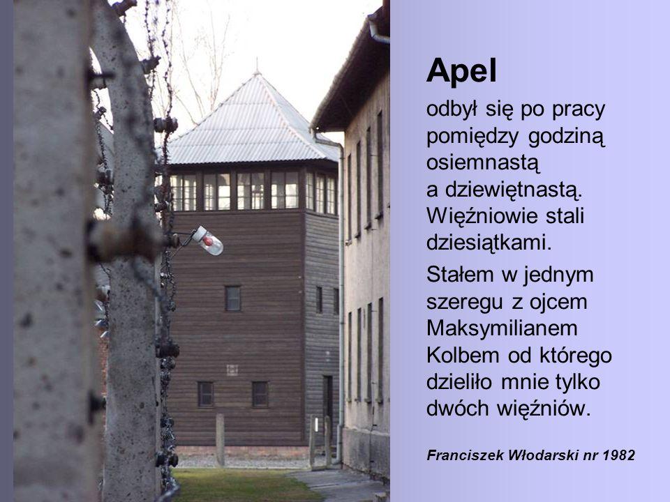 Apel odbył się po pracy pomiędzy godziną osiemnastą a dziewiętnastą. Więźniowie stali dziesiątkami.