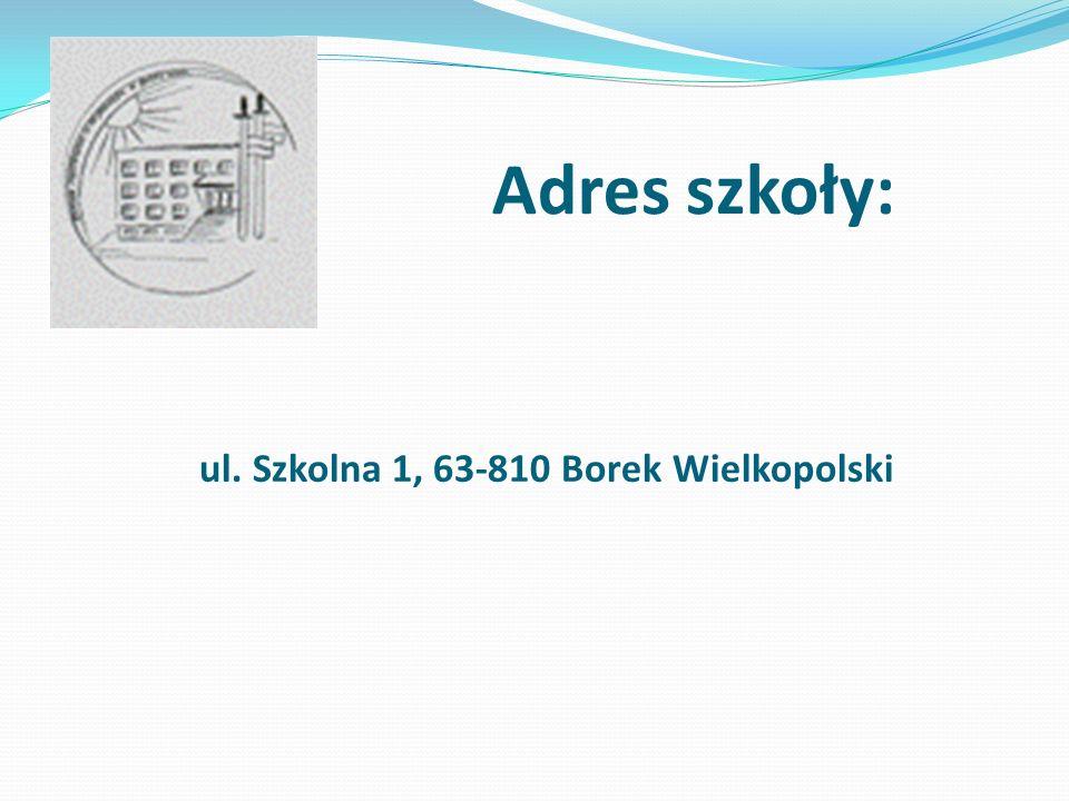 ul. Szkolna 1, 63-810 Borek Wielkopolski