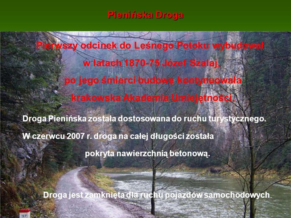 Pierwszy odcinek do Leśnego Potoku wybudował