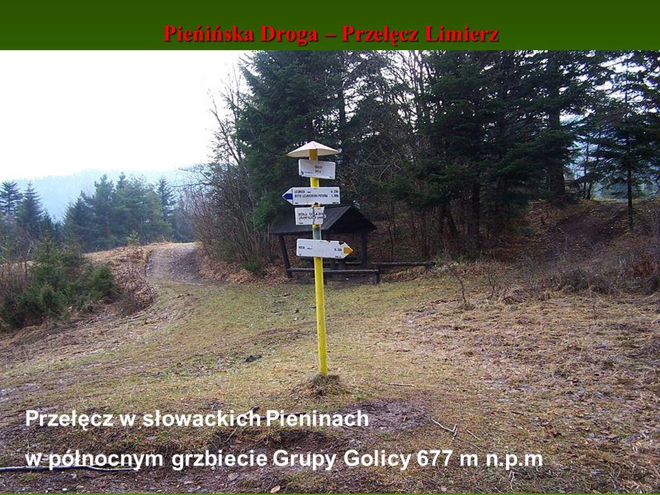 Pieńińska Droga – Przełęcz Limierz