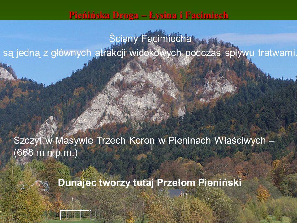 Pieńińska Droga – Łysina i Facimiech