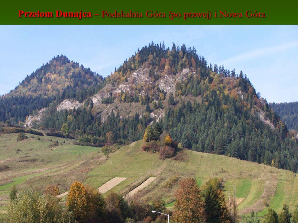 Przełom Dunajca – Podskalnia Góra (po prawej) i Nowa Góra