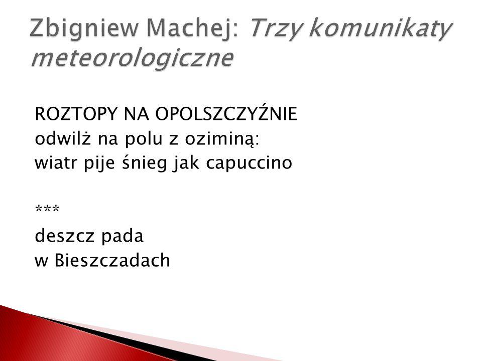 Zbigniew Machej: Trzy komunikaty meteorologiczne