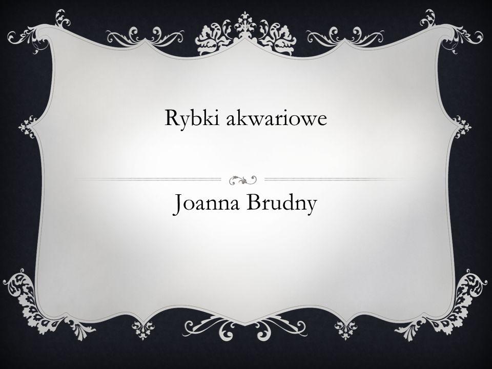 Rybki akwariowe Joanna Brudny