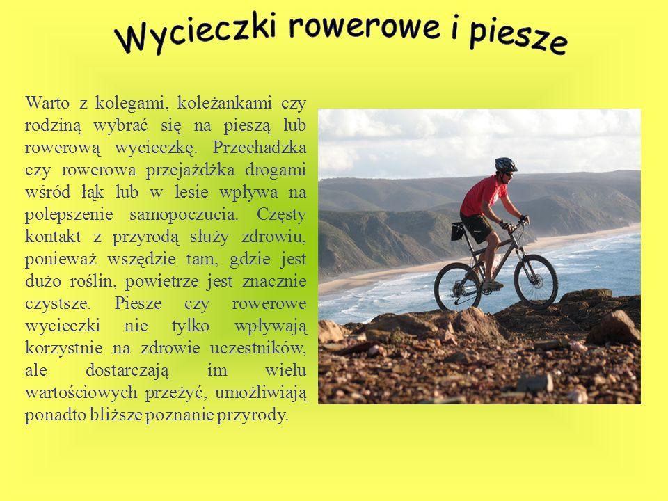 Wycieczki rowerowe i piesze