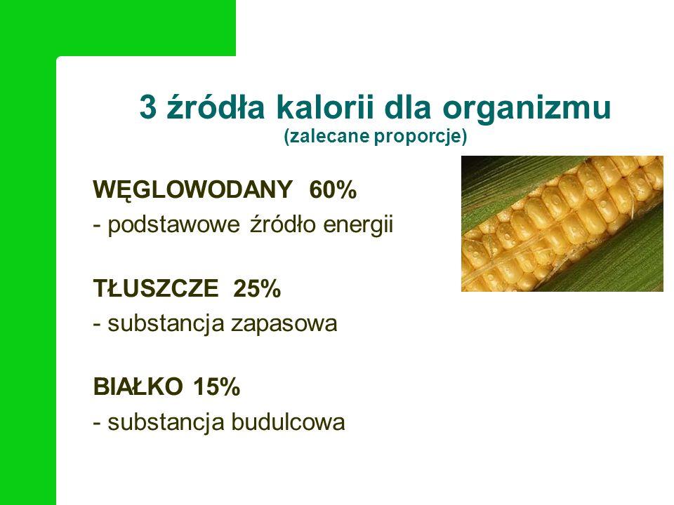 3 źródła kalorii dla organizmu (zalecane proporcje)
