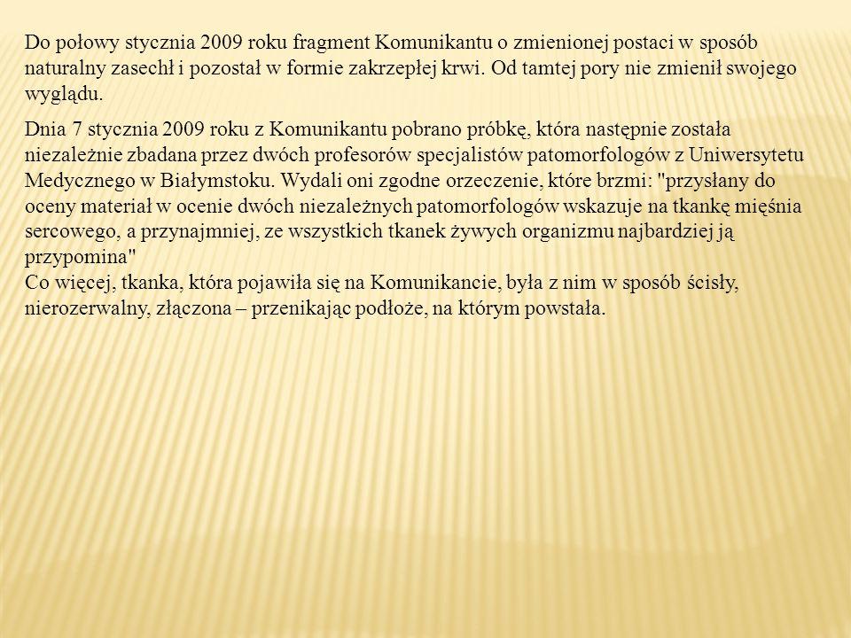 Do połowy stycznia 2009 roku fragment Komunikantu o zmienionej postaci w sposób naturalny zasechł i pozostał w formie zakrzepłej krwi. Od tamtej pory nie zmienił swojego wyglądu.