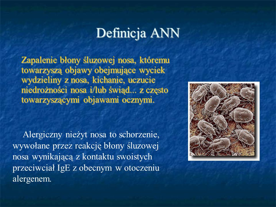 Definicja ANN