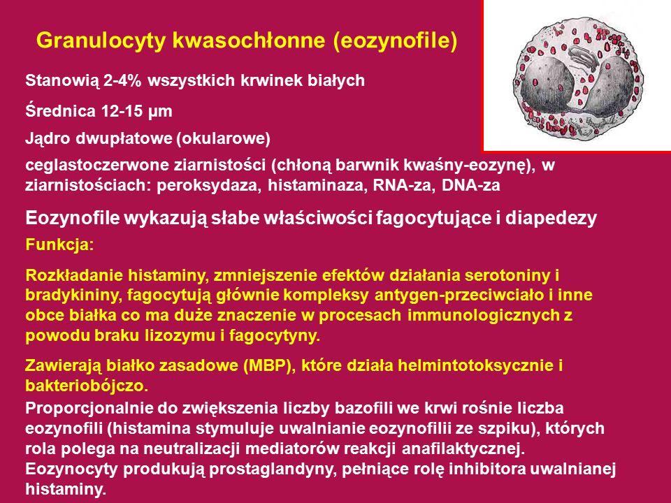 Granulocyty kwasochłonne (eozynofile)