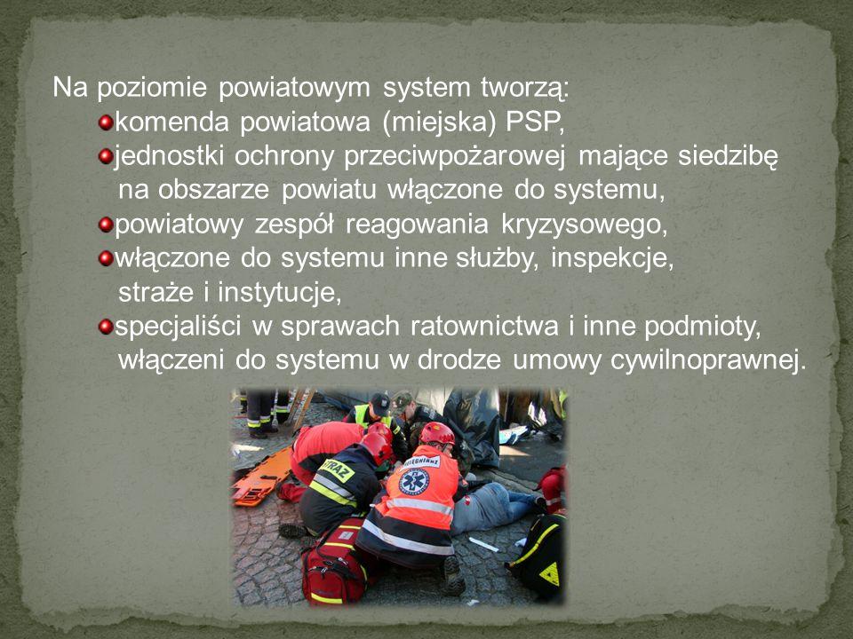 Na poziomie powiatowym system tworzą: