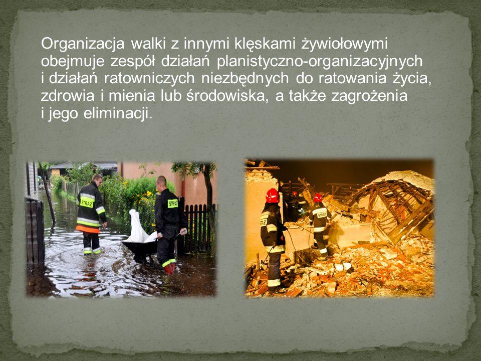 Organizacja walki z innymi klęskami żywiołowymi obejmuje zespół działań planistyczno-organizacyjnych i działań ratowniczych niezbędnych do ratowania życia, zdrowia i mienia lub środowiska, a także zagrożenia i jego eliminacji.