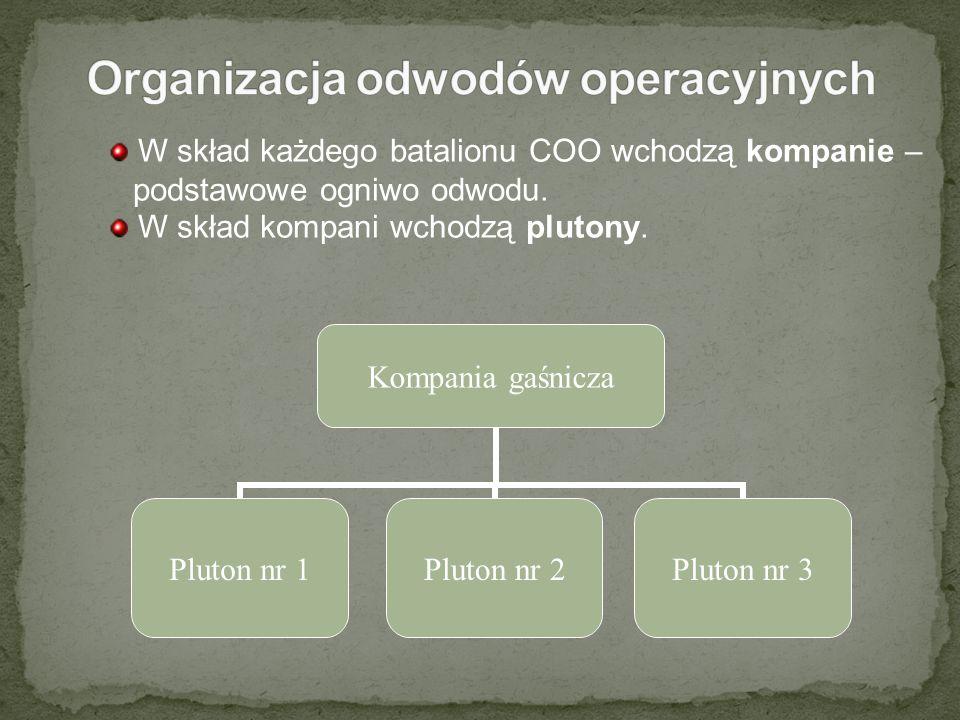Organizacja odwodów operacyjnych