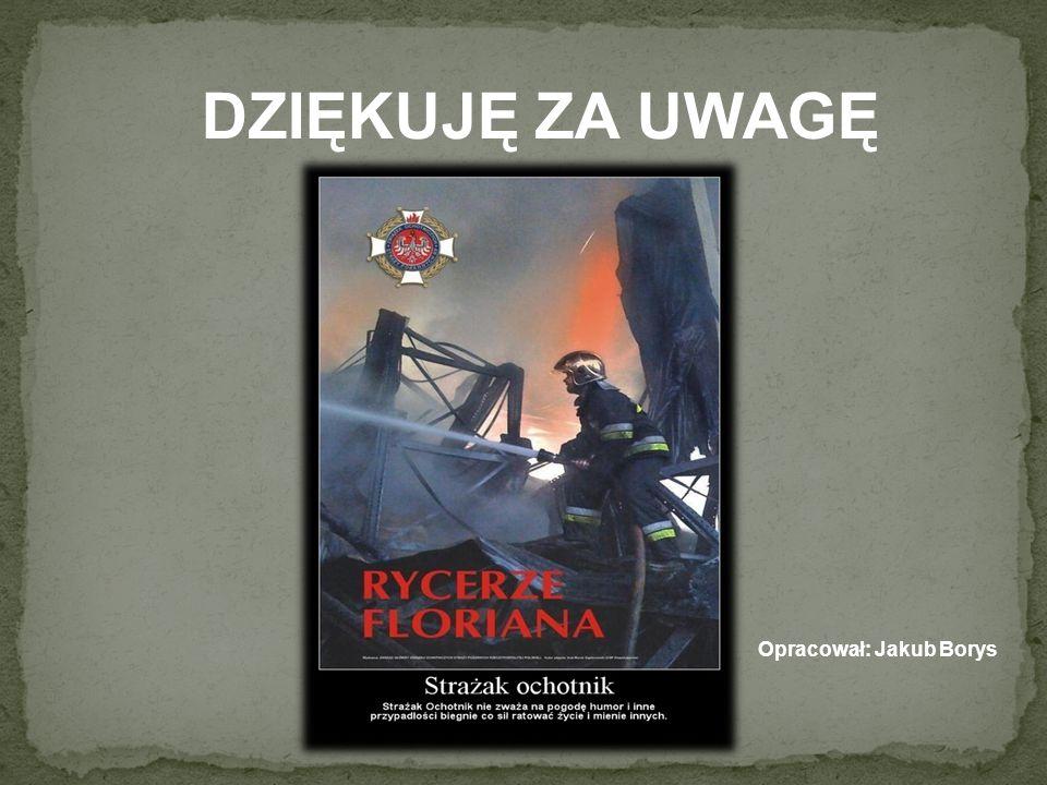 Opracował: Jakub Borys