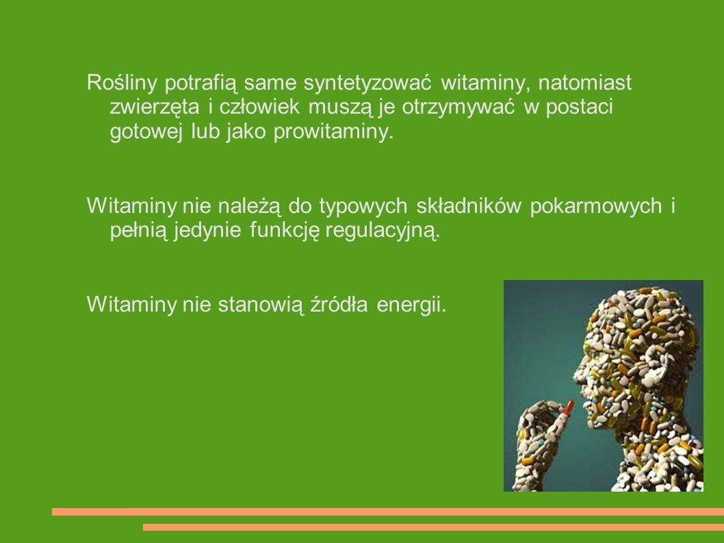 Rośliny potrafią same syntetyzować witaminy, natomiast zwierzęta i człowiek muszą je otrzymywać w postaci gotowej lub jako prowitaminy.
