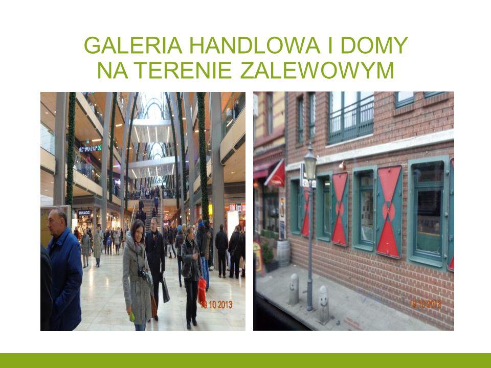 Galeria handlowa i domy na terenie zalewowym