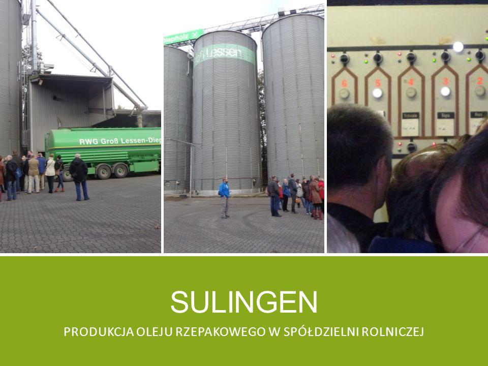 Produkcja oleju rzepakowego w spółdzielni rolniczej