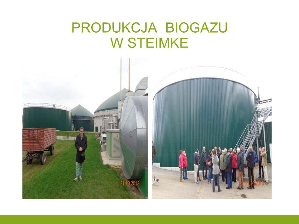 Produkcja biogazu w steimke