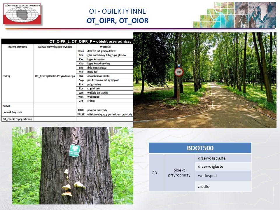 OI - OBIEKTY INNE OT_OIPR, OT_OIOR BDOT500 OB obiekt przyrodniczy