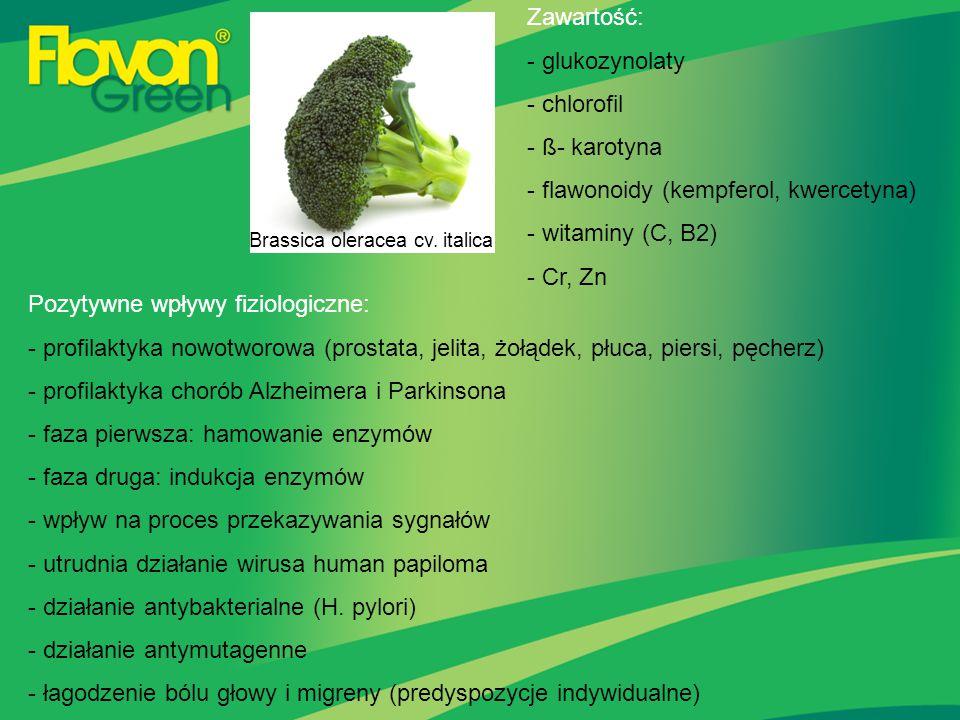 Brassica oleracea cv. italica