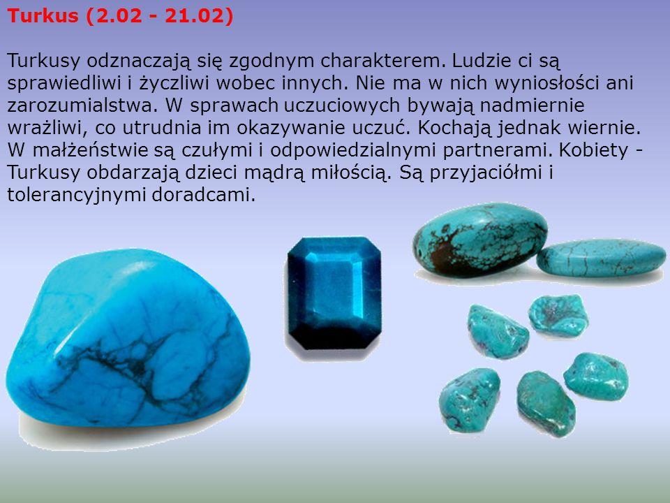 Turkus (2.02 - 21.02)