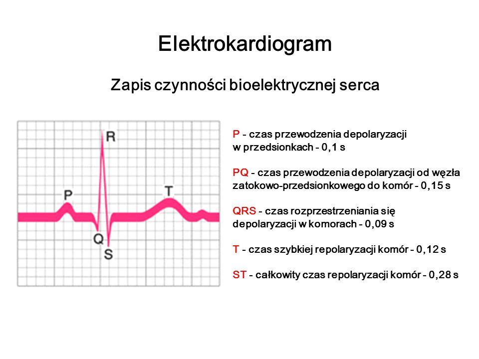 Zapis czynności bioelektrycznej serca