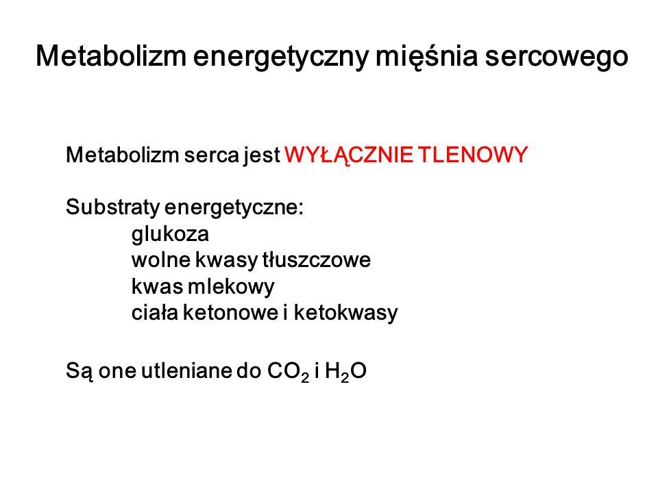 Metabolizm energetyczny mięśnia sercowego