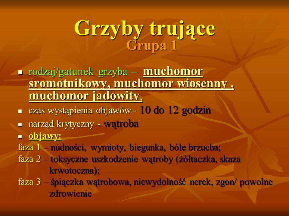 Grzyby trujące Grupa 1. rodzaj/gatunek grzyba – muchomor sromotnikowy, muchomor wiosenny , muchomor jadowity,
