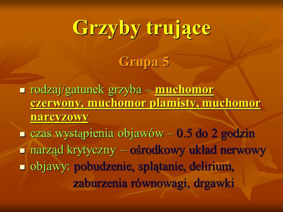 Grzyby trujące Grupa 5. rodzaj/gatunek grzyba – muchomor czerwony, muchomor plamisty, muchomor narcyzowy.