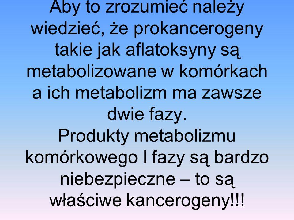 Aby to zrozumieć należy wiedzieć, że prokancerogeny takie jak aflatoksyny są metabolizowane w komórkach a ich metabolizm ma zawsze dwie fazy.