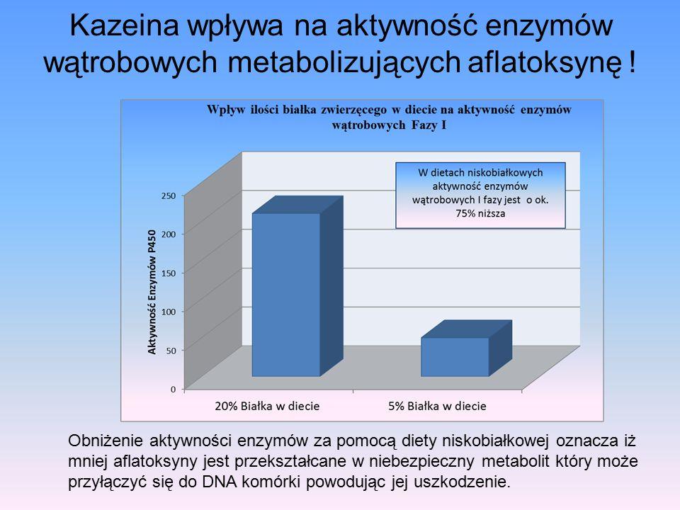Kazeina wpływa na aktywność enzymów wątrobowych metabolizujących aflatoksynę !