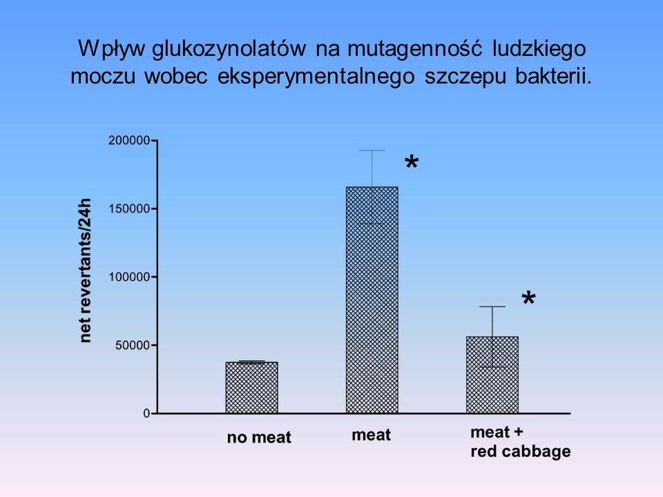 Wpływ glukozynolatów na mutagenność ludzkiego moczu wobec eksperymentalnego szczepu bakterii.