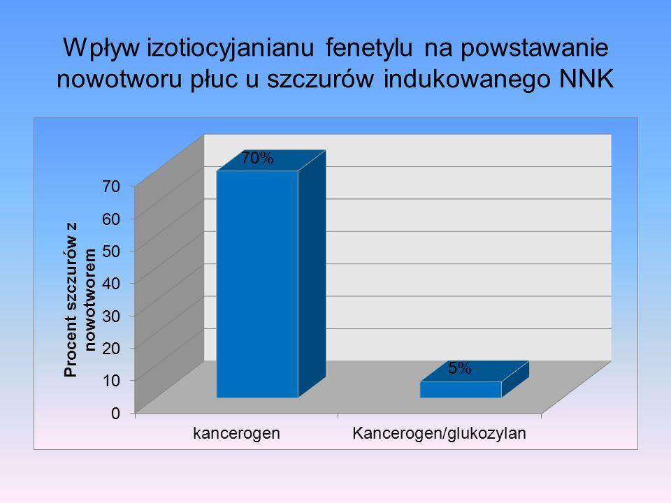 Wpływ izotiocyjanianu fenetylu na powstawanie nowotworu płuc u szczurów indukowanego NNK