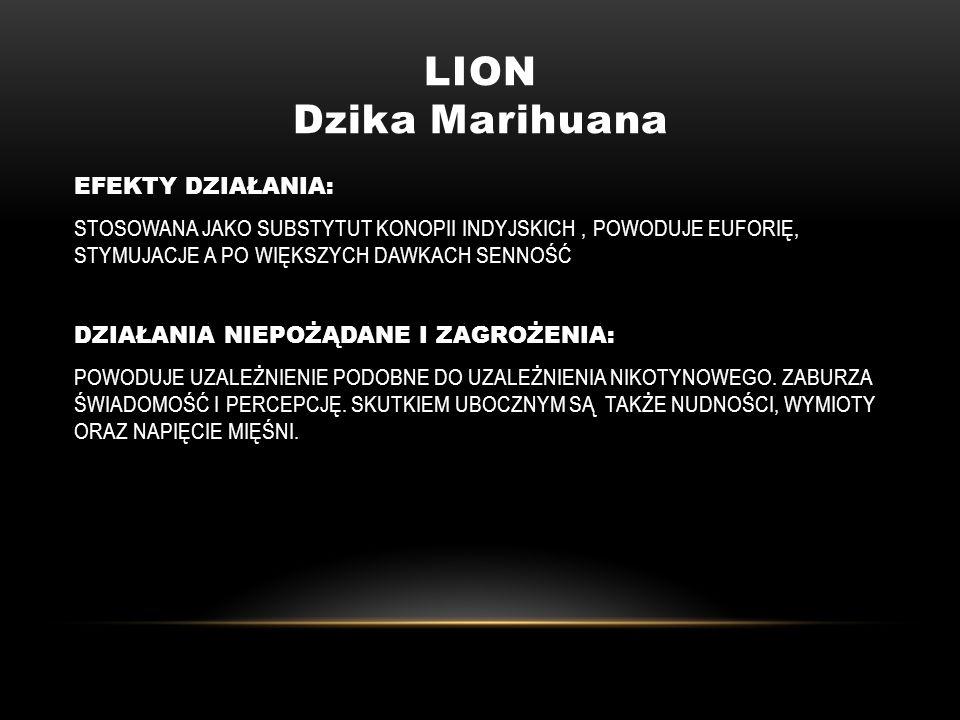 LION Dzika Marihuana