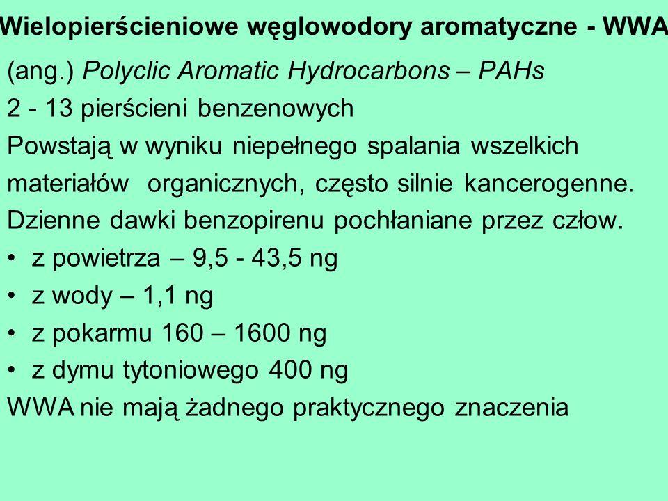 Wielopierścieniowe węglowodory aromatyczne - WWA