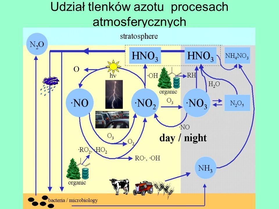 Udział tlenków azotu procesach atmosferycznych
