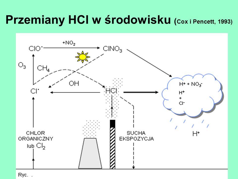 Przemiany HCl w środowisku (Cox i Pencett, 1993)
