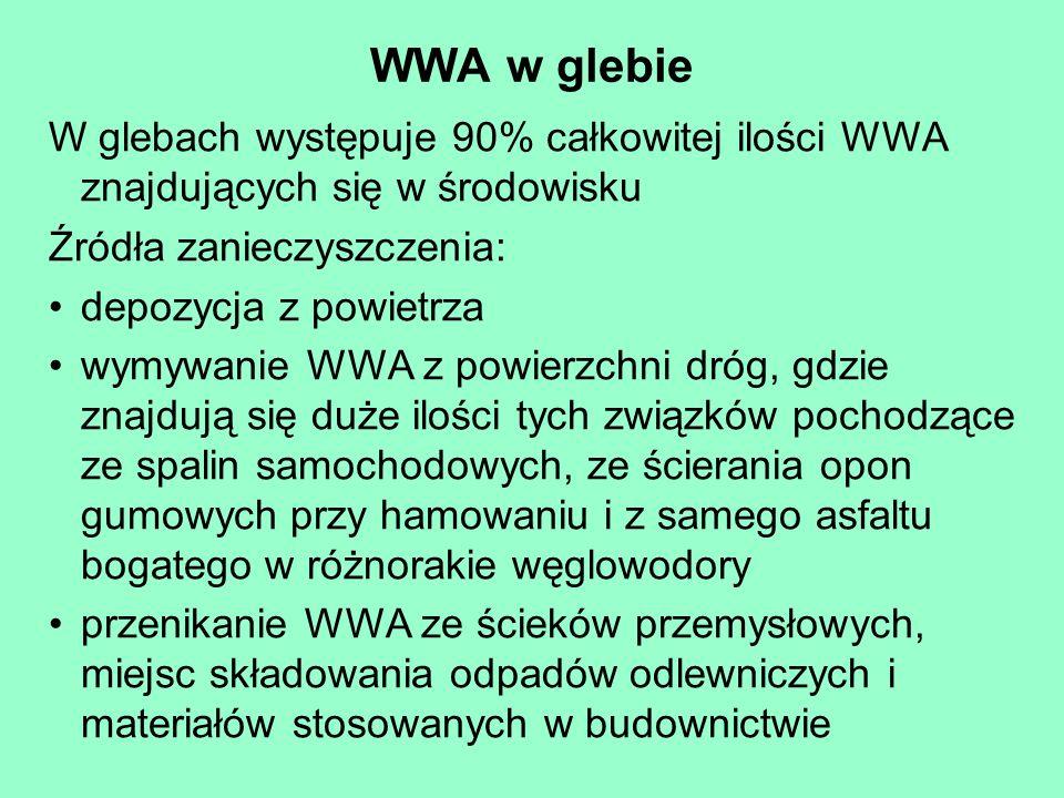 WWA w glebie W glebach występuje 90% całkowitej ilości WWA znajdujących się w środowisku. Źródła zanieczyszczenia: