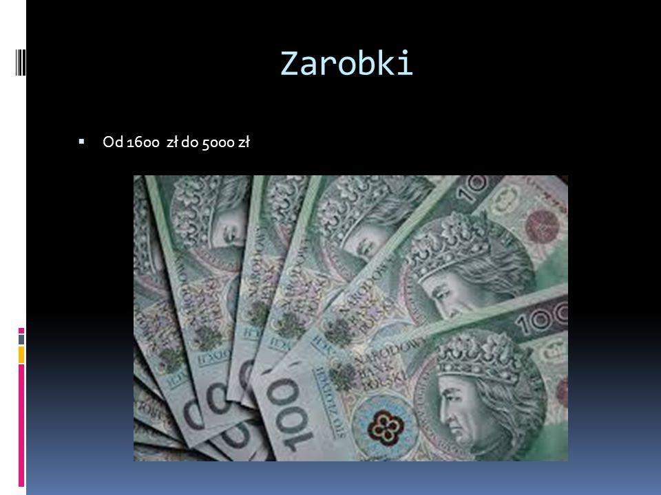 Zarobki Od 1600 zł do 5000 zł