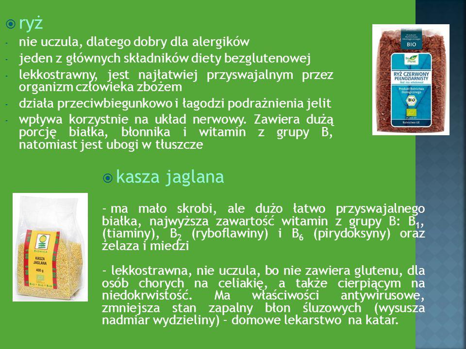 ryż kasza jaglana nie uczula, dlatego dobry dla alergików