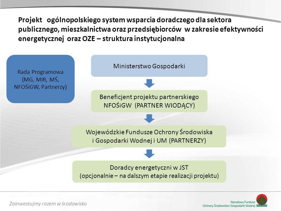 Projekt ogólnopolskiego system wsparcia doradczego dla sektora publicznego, mieszkalnictwa oraz przedsiębiorców w zakresie efektywności energetycznej oraz OZE – struktura instytucjonalna