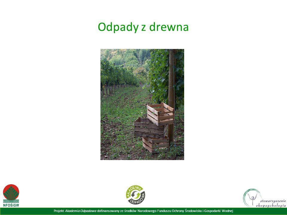 Odpady z drewna Powyższy slajd prezentuje przykłady odpadów z drewna.