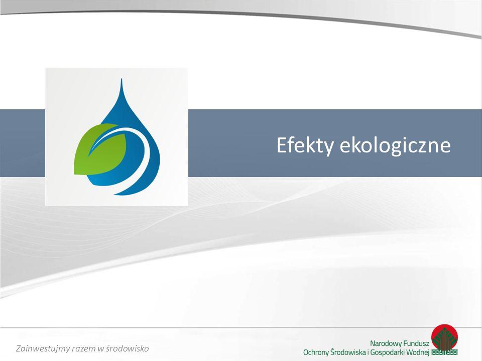 Efekty ekologiczne