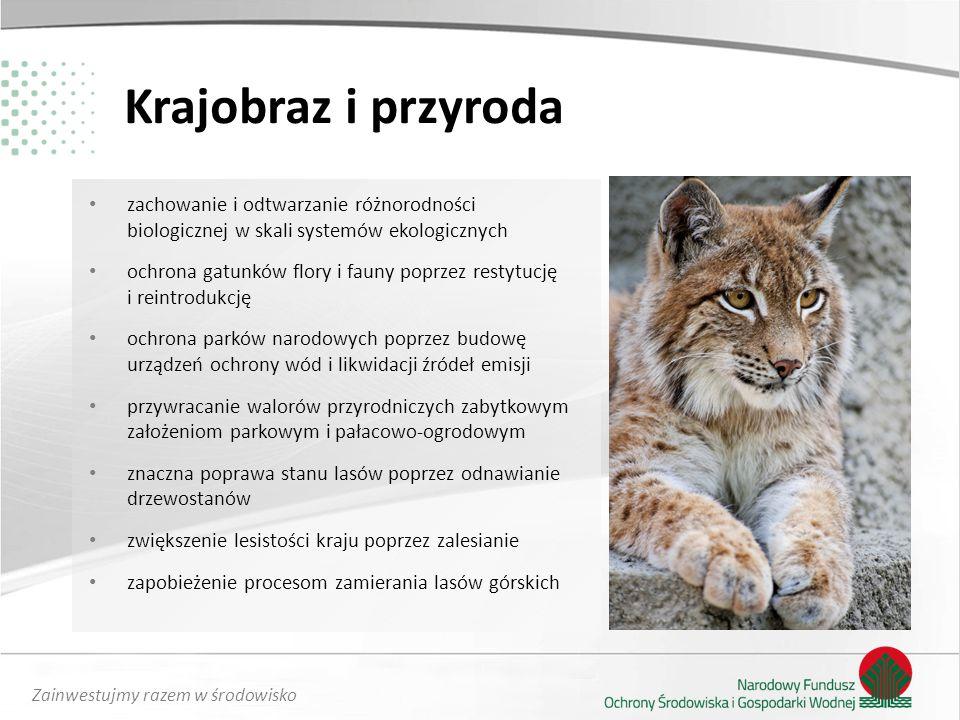 Krajobraz i przyroda zachowanie i odtwarzanie różnorodności biologicznej w skali systemów ekologicznych.