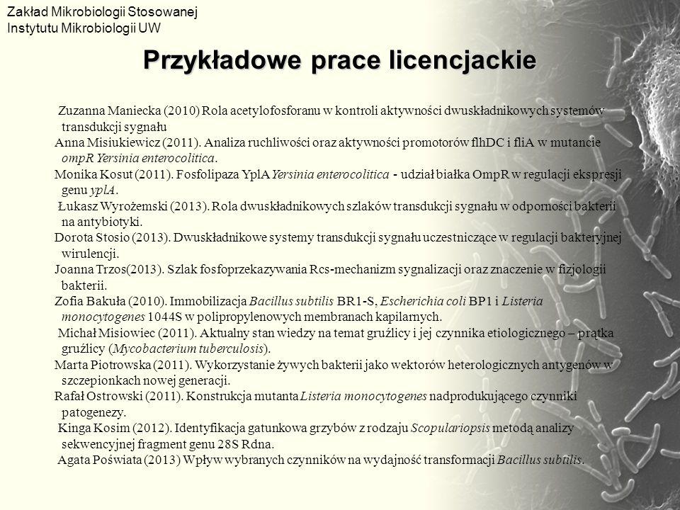 Przykładowe prace licencjackie