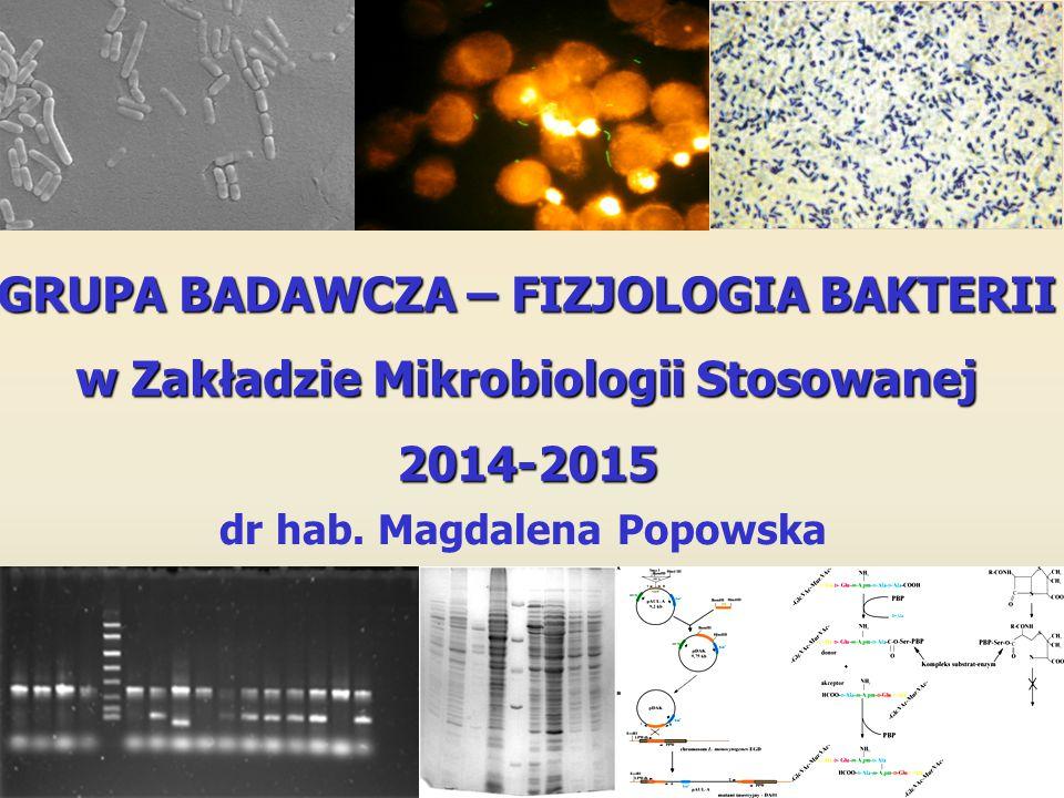 dr hab. Magdalena Popowska