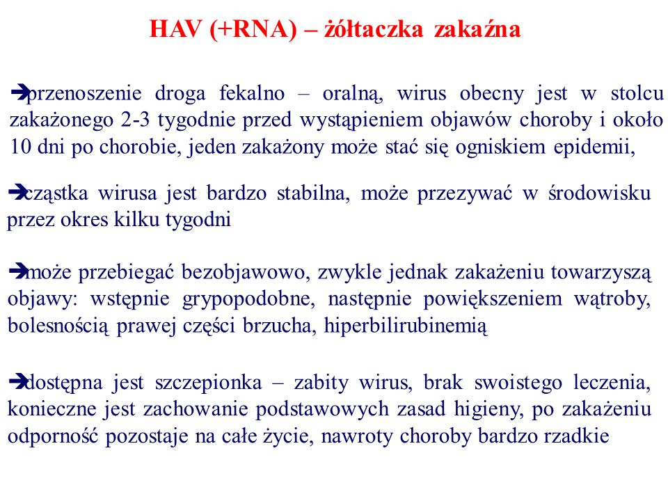 HAV (+RNA) – żółtaczka zakaźna